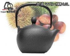 Чугунный чайник для чайной церемонии IWACHU 12027, 0,30 л
